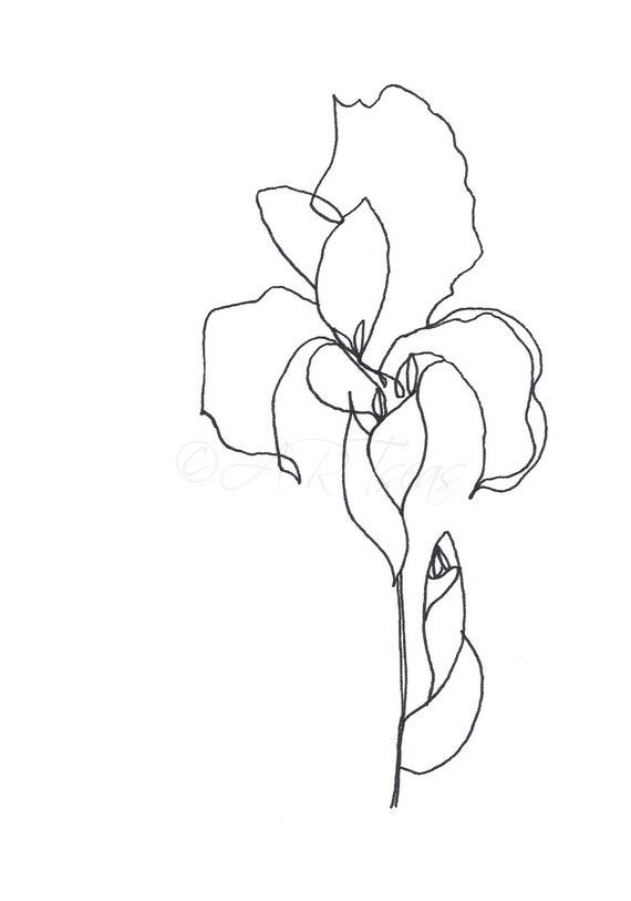 Shoe Flower Line Drawing : Original abstract minimalist drawing botanical by