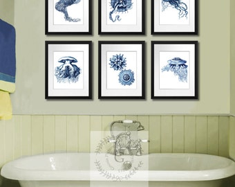 Navy Blue Jellyfish Print Set of 6 Sea life art print 8x10 Coastal Decor Bathroom Wall Art, Guest Bedroom Art, Decor Gnosis Picture Archive