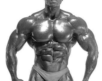 Body building muscle man Serge Nubrat 125 images inc one with Arnie Schwarzenegger gay interest beautiful men