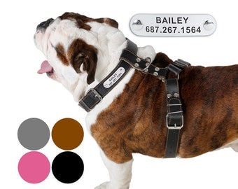 Leather Dog Harness Adjustable Size Medium Large PERSONALIZED ID TAG Black Brown Pink