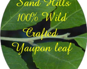 Half Pound ( 8 ounces) Bulk Yaupon Leaf-Freshly picked/dried when ordered