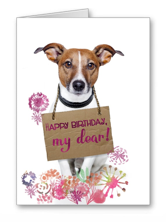 Funny dog happy birthday signs acfm – Birthday Card for Dog