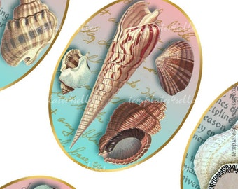 Sea Shell 30x40 mm images Digital Collage Sheet  Scrapbooking Pendants Printable Original  Printable 4x6 inch sheet 298