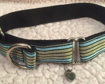 Toby collar