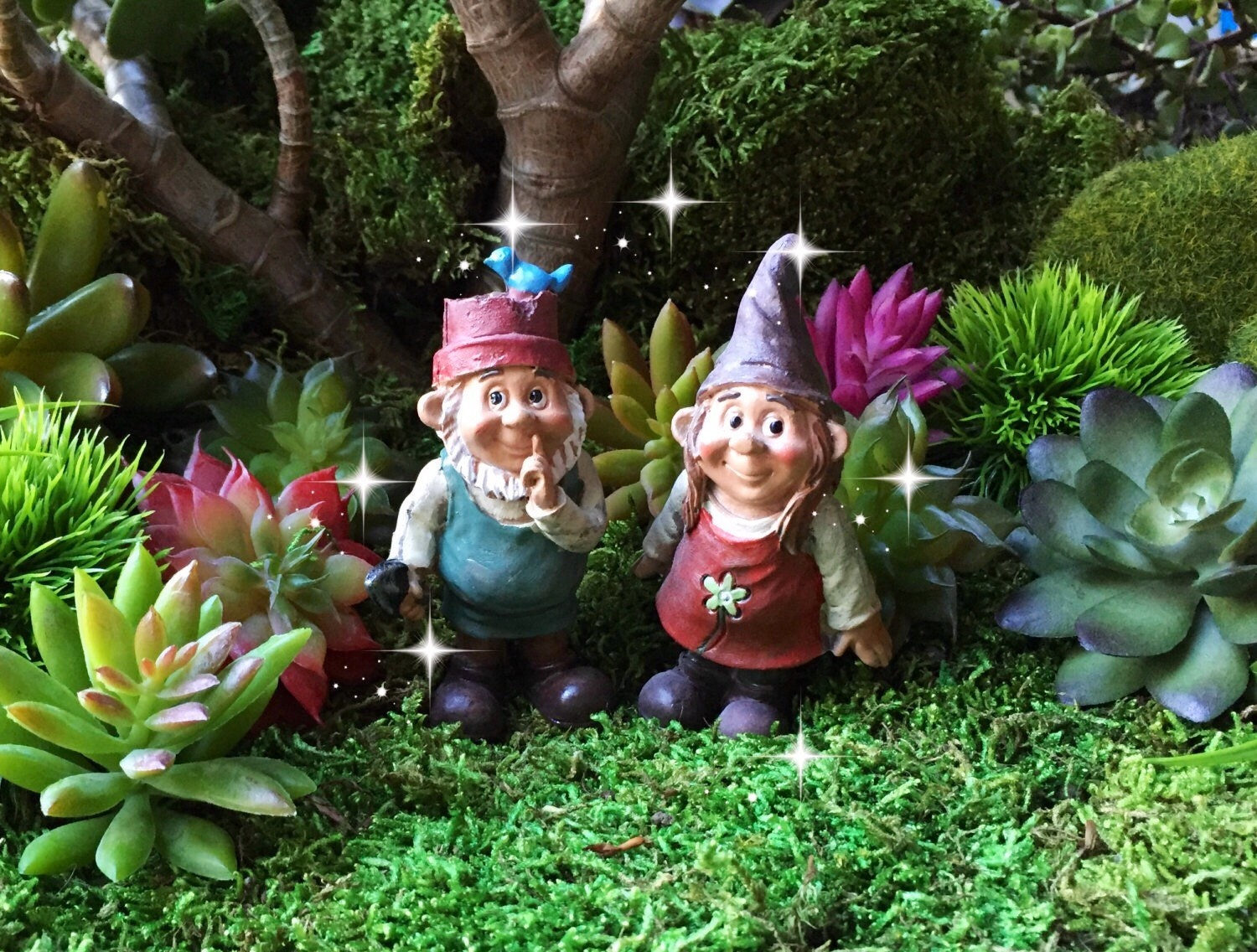 Gnome Garden: Fairy Garden Gnome Couple, Miniature Garden Gnome