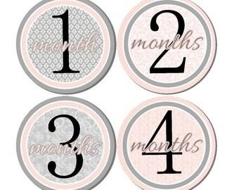 Baby Month Stickers- Milestone Sticker- Baby Girl Month Stickers- Monthly Stickers- 12 month stickers- Milestone Baby Month Stickers- G19
