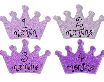 12 month stickers- Monthly Stickers- Milestone Sticker- Baby Month Stickers- Baby Girl Month Stickers- Milestone Baby Month Stickers- G68