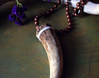 Cervine - White-Tailed Deer Antler Tine Specimen Necklace