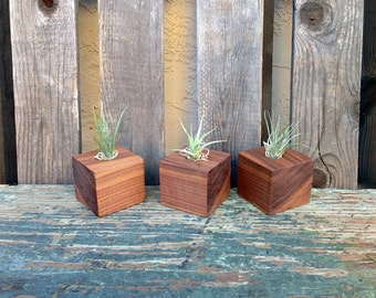 Walnut Wood Planter, Air Plant Holder, Candle Holder, Vase, Container, Home Decor