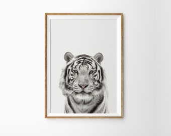 White tiger photo print - Bengal tiger print - Black and white photography -  Printable wall art - tiger art - Modern minimal photo print