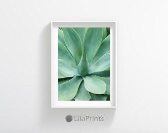 Agave Print, Succulent Prints, Minimal Agave Print, Garden Prints, Agave Plant, Succulent Poster, Garden Wall Decor, Green Minimalist Decor