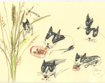Original Illustration - Mungo Cat