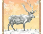Christmas Card - Winter Elk