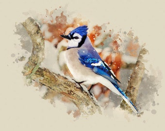 Blue Jay Wildlife Print, Nature Art, Bird Art Print, Blue Jay Bird Decor, Watercolor Bird, Fine Art Bird Pictures, Country Wall Art Decor