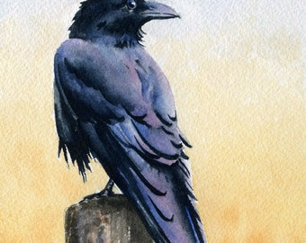 Raven Art Print - Watercolor Painting - Signed by Artist DJ Rogers - Wildlife - Wall Decor