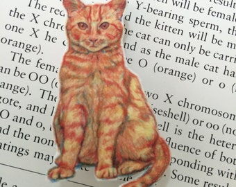 Red Tabby Cat Brooch