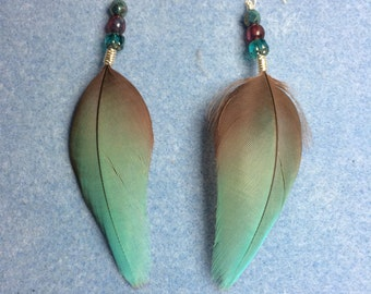 Turquoise and red greenwinged macaw feather earrings adorned with turquoise and red Czech glass beads.