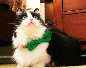 Pet bow tie, sparkly pet bow tie, dog bow tie, cat bow tie, holiday bow tie -- BT2004