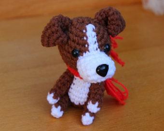 Chihuahua - American Girl's Dog