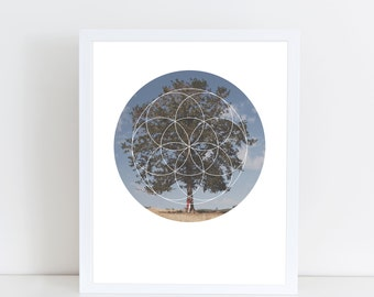 Free Tree Hugs Art Print - Inspirational Love for Nature Wall Art, Beautiful Old Tree Geometric Photography Art, Printable Save Trees Poster
