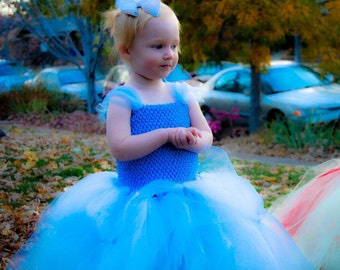 Cinderella dress up costume