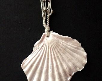 Boho Shell Long Necklace