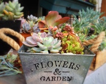 Free Shipping*Modern Square Planter/ Metal planter pot/ Shabby Chic planter/ Planter with Rope Handles/ Minimalist decor/ Shabby Chic weddin