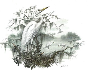 A Large Print (12 inches tall and 15 inches wide) of American Egret painted by James Lockhart for the book Wild America