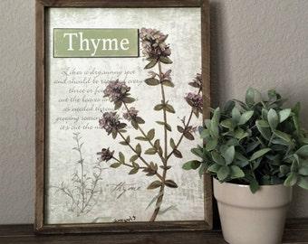 Thyme Botanical Wall Decor