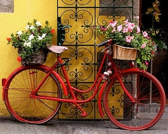 Fine Art Color Photograph, Garlic, Flowers and a Red Bike, Normandy, France