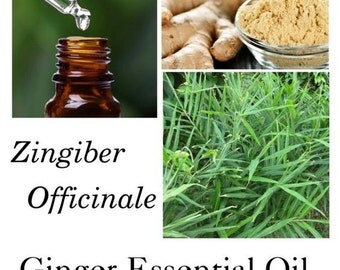Ginger Essential Oil, Ginger oil, Ginger Essential Oil Uses,  Zingiber Officinale – 100% Pure Authentic Ginger EO