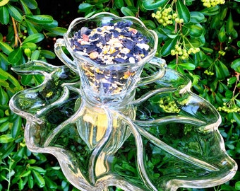 Paisley • Bird Feeder • Fall Leaves • Vintage Repurposed Glass Bird Feeder • Retro Leaf • Animal Lover