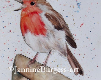 ROBIN REDBREAST Picture. Giclee Print taken from my Original artwork Watercolour and ink Painting from my garden birds collection.