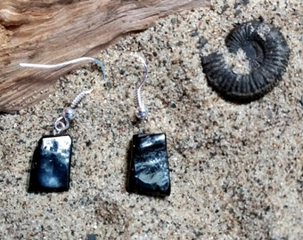 Whitby jet natural drop earrings