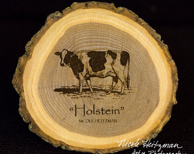 Father's Day Gift for Men Cattle Art Holstein Cow Coaster Wood Art Farm Decor Dairy Cattle Man Cave  Holstein Wood Coasters Nicole Heitzman