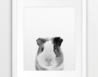Guinea Pig Print, Nursery Animal Wall Art, Black And White, Animal Photography, Kids Pet, Modern Art, Nursery Decor, Kids Room Printable Art