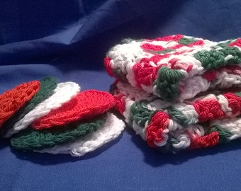 Dish Cloth and Coaster Set - Christmas