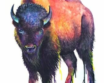 Sunset Watercolor Buffalo Print FREE SHIPPING IN U.S.A