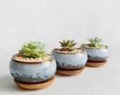 Glazed Ceramic Succulent Planter-Cacti Pot-Zen Minimalist-Home Decoration