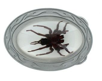 Tarantula Spider Buckle Oval