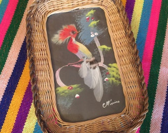 Funky Vintage Bird Feather Wall Hanging Art - Wicker Frame