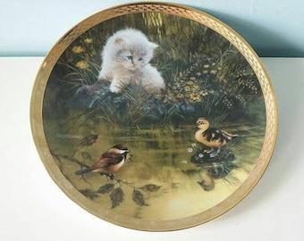 Duck Pond dilemma collectors wall decor plate Giordano England