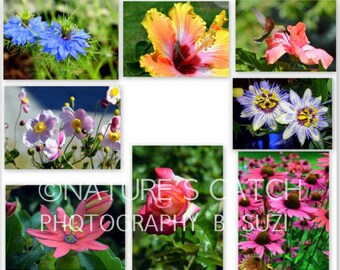 Foldover NOTE CARDS - Flowers in Macro Photography with Envelopes (Pack of 8)