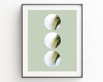 Palm Leaf Print Art, Circle Print 16 x 20, Palm Leaf Printable, Palm Tree Wall Print, Tropical Leafs Print, Palm Leaf Decor, Wall Prints
