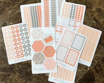 Fleur Kit: WEEKLY MONTHLY KIT Repositioinable Planner Stickers - A5 or Bound - Color Matched to Inkwell Press Dreamsicle LucKaty