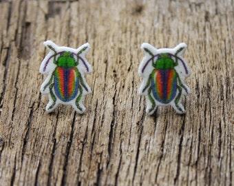 Beetle Stud Earrings