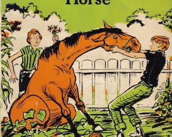 Found: One Orange-Brown Horse