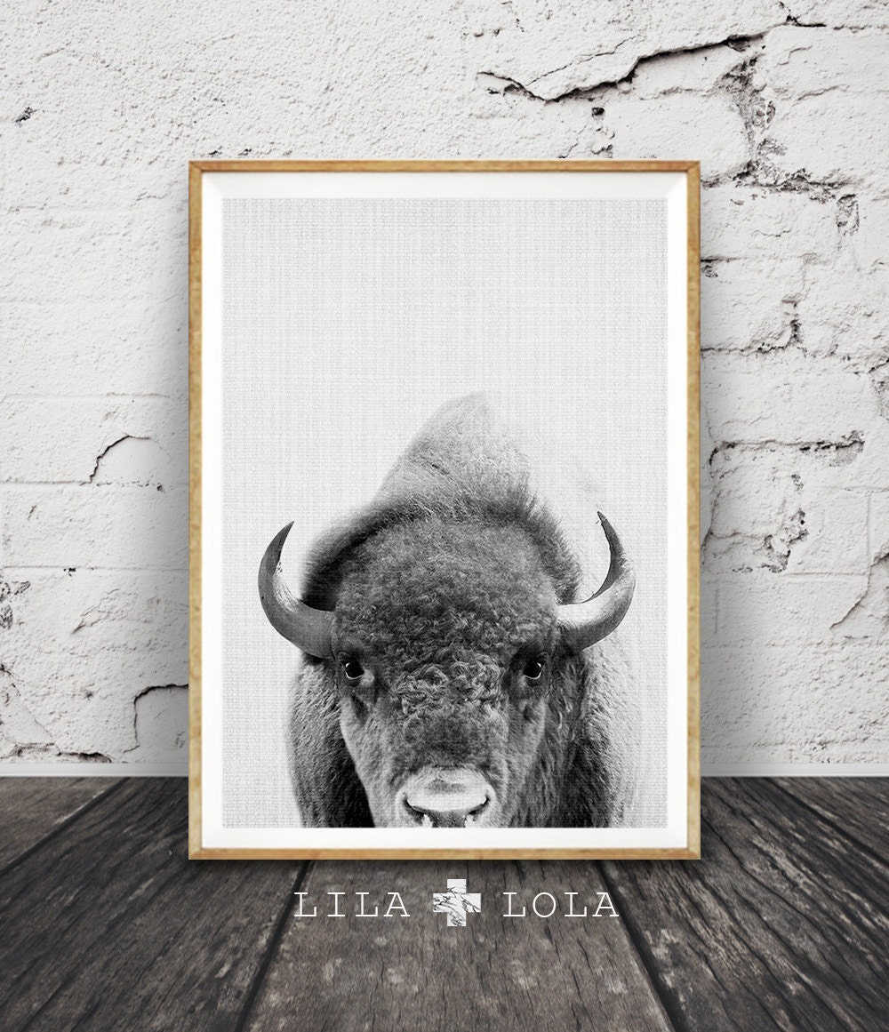 buffalo print bison wall art nursery decor kids room. Black Bedroom Furniture Sets. Home Design Ideas