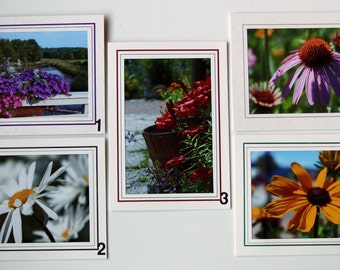 LoJo Photo Cards - flowers