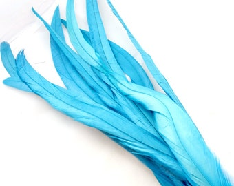 13-15 Inch Turquoise Blue Feathers (5) Sapphire Blue Bird Feather. Light Blue Costume Feather. Long Feather. Rooster Feather. Tail Feather